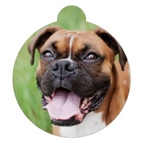 Bulldog red black mask  Picture ID tag